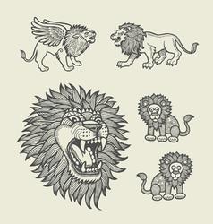 Lion decoration sketches vector