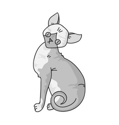 sphynx icon in monochrome style isolated on white vector image