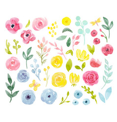 watercolor abstract floral set vector image