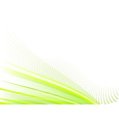 green background on the white vector image