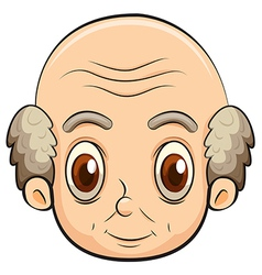 A bald old man vector image vector image