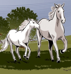 Pastoral horse family vector