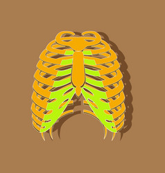 Chest thorax paper sticker on stylish background vector
