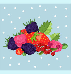 Blackberries background card vector