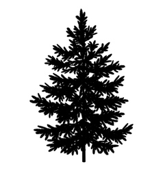 Christmas spruce fir tree silhouette vector image