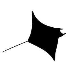 icon manta fish vector image