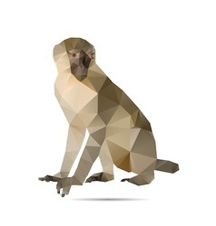 Abstract monkey vector