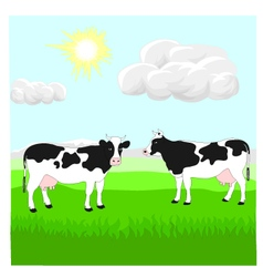 Cows on the lawn vector image