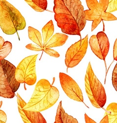 Seamless pattern of autumn leaves watercolor vector image