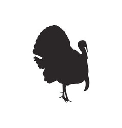 Turkey silhouette vector image