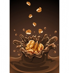 Walnuts vector