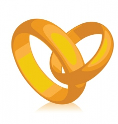 Band of gold wedding rings vector