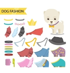 Dog jewelry clothing icon set vector image