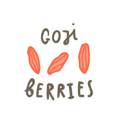 Goji berries superfood vector