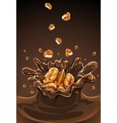 walnuts vector image