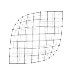 Wireframe mesh sheet vector