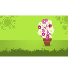 Background spring flower vector