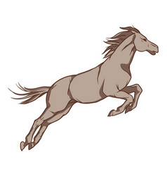 jumping horse hand drawn vector image