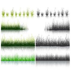 set of green and black grass isolated on white vector image vector image