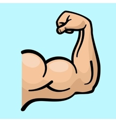Muscle arms strong bicep icon vector