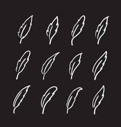 Group of hand drawn feather on black background vector