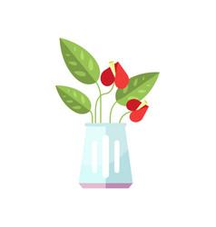 Anthurium house plant indoor flower in pot vector
