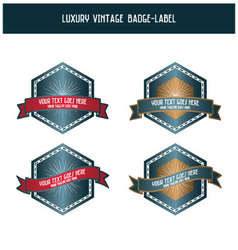 Luxury vintage badge-label vector image vector image