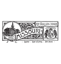 The state banner of missouri the bullion state vector