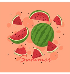 Summer watermelon fruit slice vector