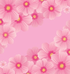 cosmos flowers vector image vector image