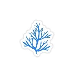 Icon sticker realistic design on paper rosemary vector