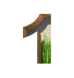 Grass cutted figure 1 paste to any background vector