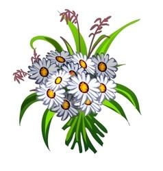 Elegant bouquet of white wildflowers vector
