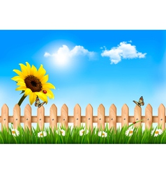 Summer nature background with sunflower and wooden vector
