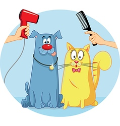 Cat and Dog at Pet Salon Cartoon vector image