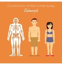 Constitution of Human Body Endomorph Endomorphic vector image