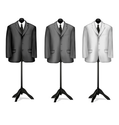 mannequin suites vector image vector image