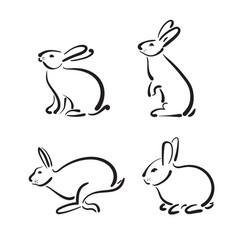 Group of hand drawn rabbit on white background vector