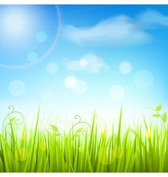 Spring meadow grass blue sky poster vector