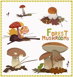 forest mushrooms vector image vector image