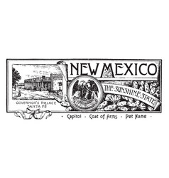 The state banner of new mexico the sunshine state vector