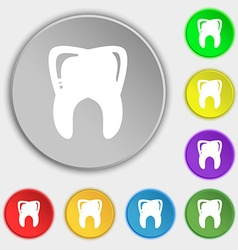 Tooth icon sign symbol on eight flat buttons vector