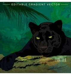 Wild Cats Panther vector image