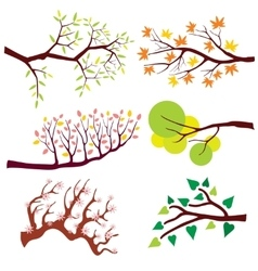 Tree branch with leaves and flowers set vector