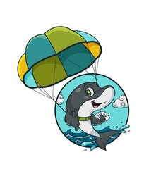 Dolphin on a paraglider vector