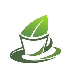 Herbal tea with a green leaf vector