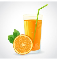 A glass of fresh orange juice and orange vector