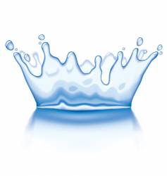 Water crown vector