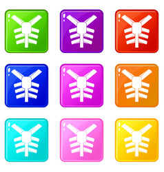 human thorax icons 9 set vector image vector image