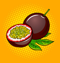 Passion fruit pop art vector
